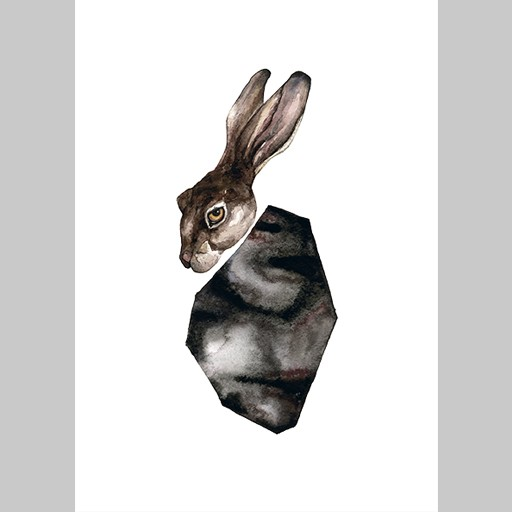 Angelica_Sollander_The_Hare